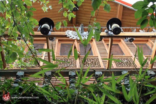 خانه جنگلی در دل پایتخت  این خانه زیست محیطی است