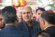 سرانه مصرف گل در ایران ۳ شاخه است| نمایشگاه دائمی گل در دستور کار است