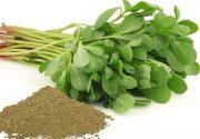 یک نوع سبزی خوردن ۹۹ درد را درمان می کند!