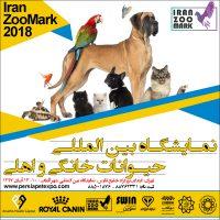 ترویج سگ گردی با حمایت شهرداری| جشنواره بین المللی سگ و گربه در تهران!
