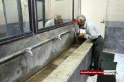 عکس| سرویس های بهداشتی کثیف و ناپاک در امامزاده های پایتخت