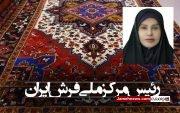 «فرح ناز رافع» رئیس مرکز ملی فرش ایران شد