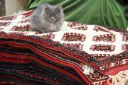 عکس| روزهای تلخ بازار فرش دستباف تهران