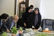 عکس| نخستین جلسه راهبری و پایش هنر-صنعت فرش دستباف ایران