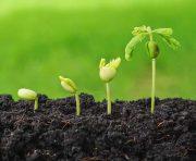 قانون حفاظت از خاک