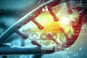 کشف راه جدید درمان چاقی با دستکاری هوشمند ژنتیک