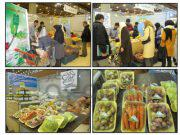 عرضه محصولات ارگانیک نباید محدود به جشنواره ها باشد