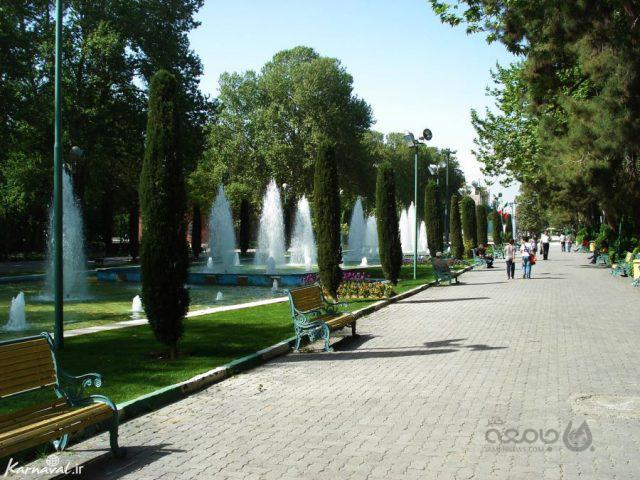 کاشت ۲۲ هزار درخت| منطقه ۶ تهران جنگل می شود؟!